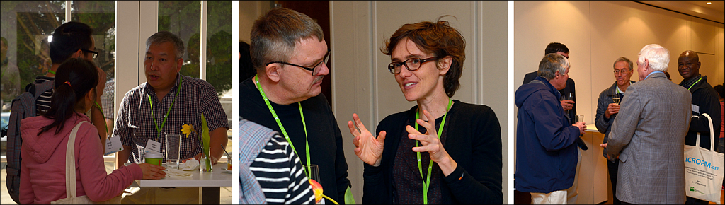 Discussions among researchers at iCROPM
