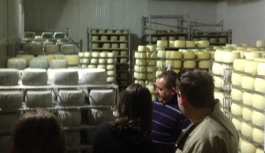 Cheese Manufacture, Sardinia